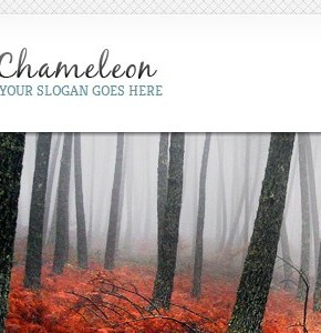 Chameleon ElegantThemes универсальный русский шаблон Wordpress