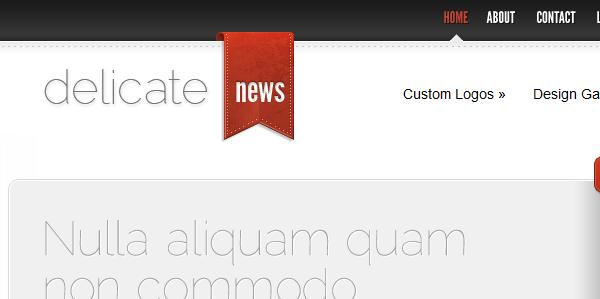 DelicateNews ElegantThemes красивый шаблон блога Wordpress