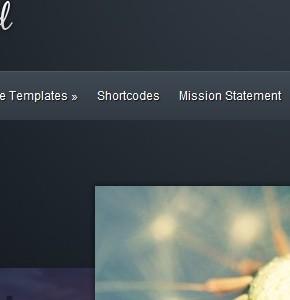 Envisioned  ElegantThemes тема для портфолио или бизнес сайтов Wordpress