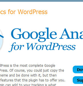 Плагин Google Analytics для WordPress