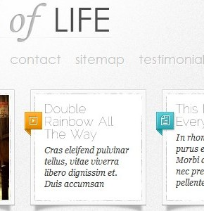 DailyNotes ElegantThemes шаблон блога Wordpress