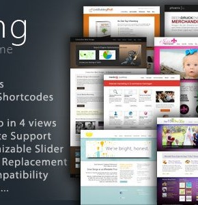 Striking Themeforest шаблон для портфолио или бизнес сайта на Wordpress
