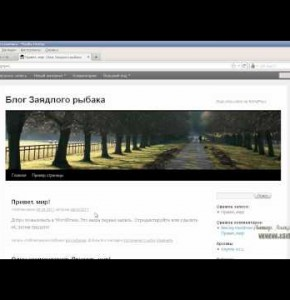Видео: Знакомство с панелью управления Wordpress и структурой блога, part 5