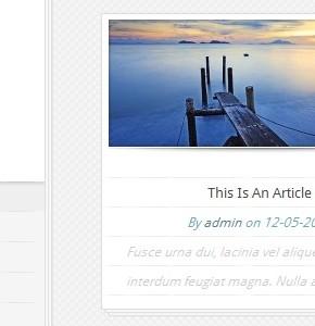 Notebook ElegantThemes шаблон Wordpress для современных блогов с видео, аудио и другими материалами