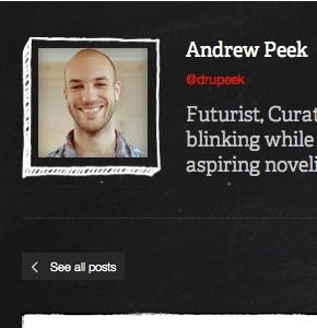Отображение аватара автора постов в Wordpress с помощью сниппета