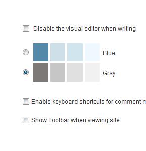 Убираем возможность изменения цвета шаблона в админке Wordpress