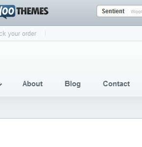 Sentient WooThemes тема интернет магазина с блогом Wordpress