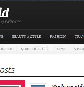 Splendid WpZoom новостной шаблон Wordpress