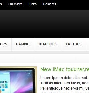 Gadget ThemeJunkie отличный блоговый шаблон Wordpress