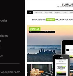Surplus Themeforest минимализм бизнес тема Wordpress (Business)