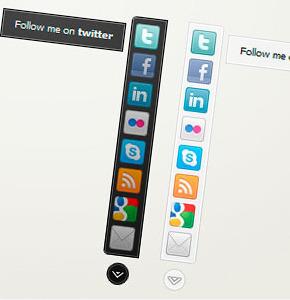 Social Bar Code canyon премиум плагин социальных кнопок Wordpress
