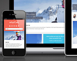 Wildfire Responsive Themeforest портфолио тема Wordpress