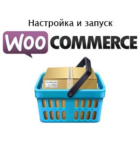 Делаем интернет магазин Wordpress, с плагином WooCommerce. Часть 2  настройка и запуск