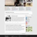 Внешний вид шаблона Website - responsive WordPress theme
