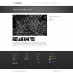 Обзор с картинками шаблона Carbon Themeforest