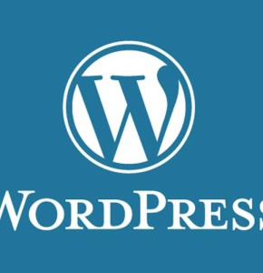 Как преуспеть в разработке сайта на WordPress