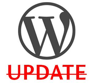 Запрет обновления Wordpress